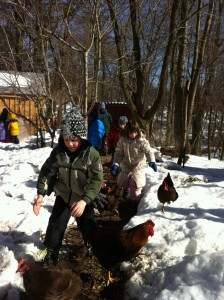 Students navigate the snow with their feathered friends