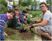 Students from Worthington-Hooker School in New Haven work with Common Ground students on the installation of their Schoolyard Habitat. This year, East Rock and Edgewood will design and install a wildlife habitat on campus.