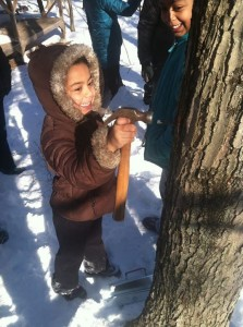Learning to tap a a sugaring open house