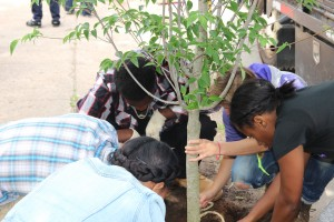 Students plant a tree in memory of Jericho Scott.