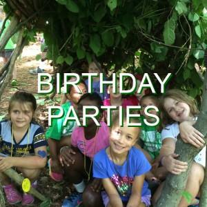 06-BirthdayParties