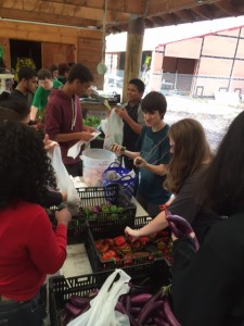 Students pack up produce harvested at Common Ground for the Farm Share program available to students and their families.