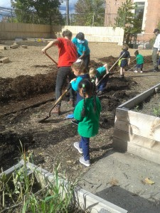 Children use rakes, shovels, and other garden tools to work on a school garden expansion program at Elm City Montessori School.