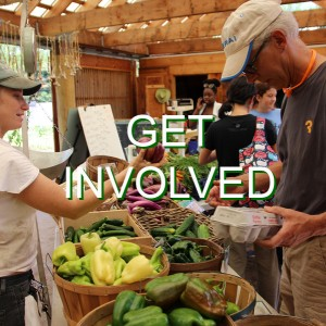 "An active farmstand with farmers and patrons surrounded by farm fresh produce and products. The words ""Get Involved"" is written across the image."