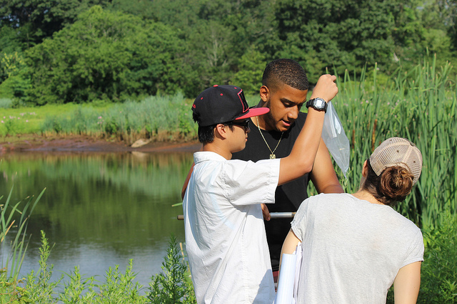 Common Ground student Loc Nguyen and recent graduate Michael Bruno work with Georgia Basso of the U.S. Fish and Wildlife Service to collect insect biodiversity data at New Haven's West River Memorial Park.