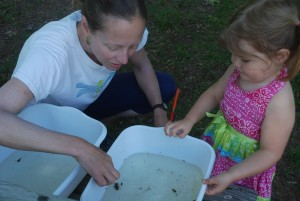 An invironmental educator teaches a toddler learns about the water bug she discovered in the wetland at Common Ground.