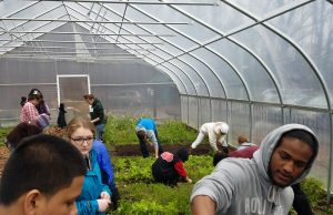 Leah Penniman joins French students and farm staff in the garden. Photo Credit: Dishaun Harris.