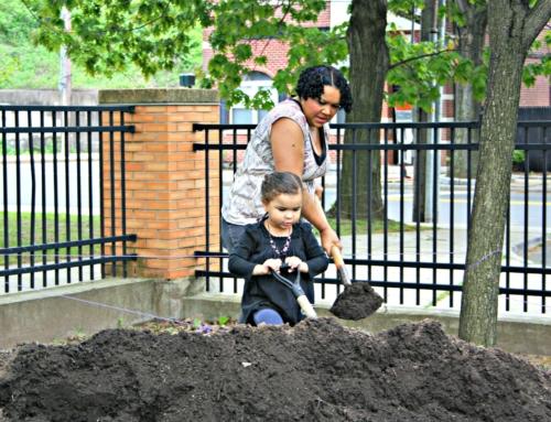 Schoolyard Habitat Community Grows