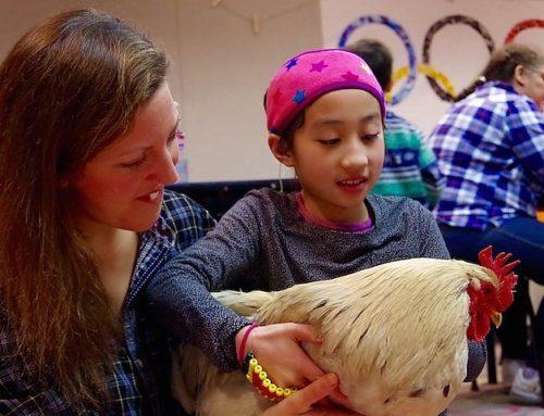 New Haven Independent: Gertie Gets an Interpreter