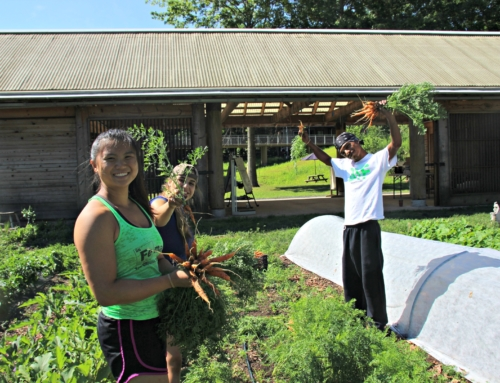 Common Ground Seeks Farm Based Education Coordinator