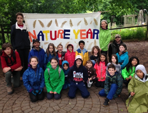 APPLICATION PERIOD CLOSED. Common Ground seeks Part-Time Forest School Teachers and Assistant Teachers in the NatureYear Program