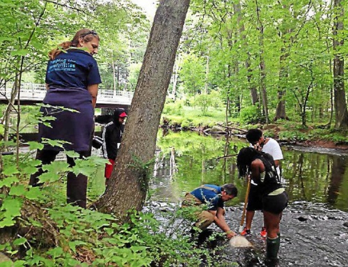 New Haven Register: New Haven Common Ground students get a taste of Regional Water Authority jobs