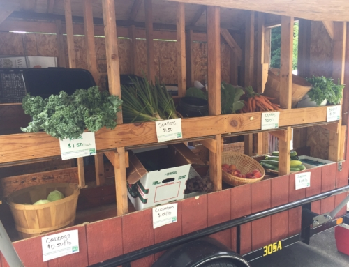 The Mobile Market is open for business (and in the news!)