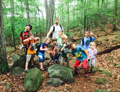 FILLED- Common Ground is Seeking an Assistant Teacher in Nature Based Enrichment Programs